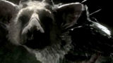 The Last Guardian destinato ad esordire nel 2014?