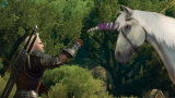 The Witcher: trailer di lancio per l'espansione Blood and Wine